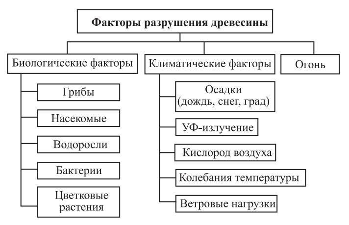 Факторы разрушения древесины