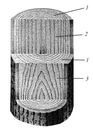 Текстура различных разрезов ствола дерева