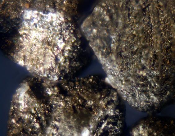 Частицы угля в буроугольном коксе