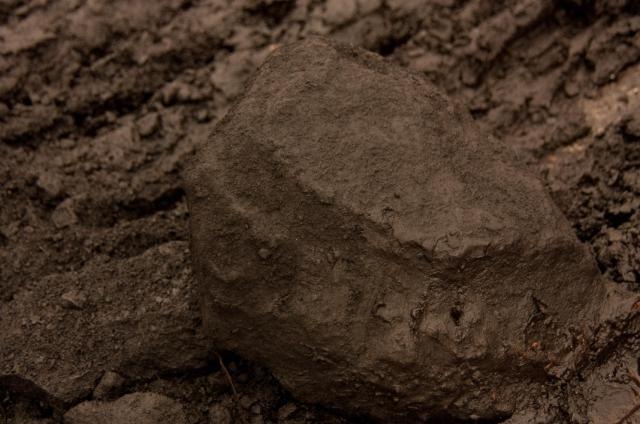 Наиболее типичный внешний вид бурого угля