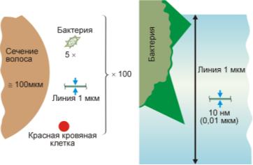 Схематическое сравнение нанообъёктов с микрообъектами