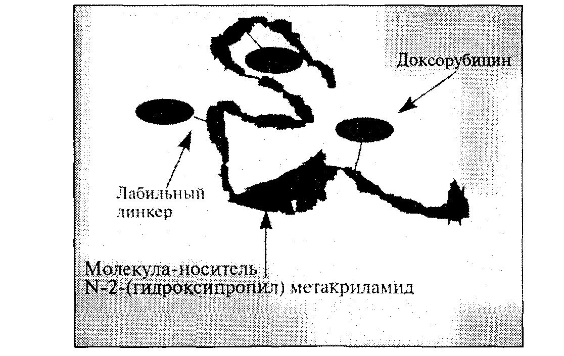 Биологический противораковый нанокомплекс РК1