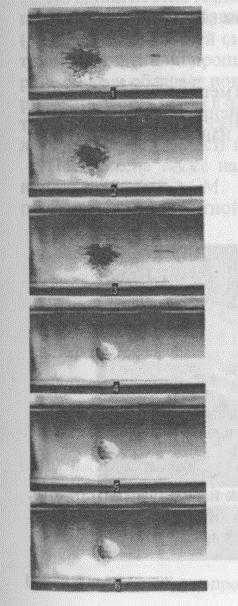 Лазерно-направляемый перенос отдельной клетки спинного мозга вдоль полого оптического волокна