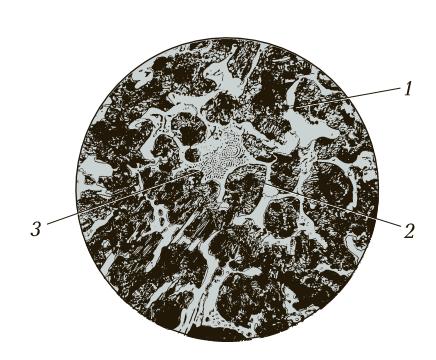 Микроструктура половинчатого чугуна