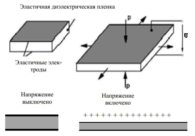 Принцип действия диэлектрического ЭАП