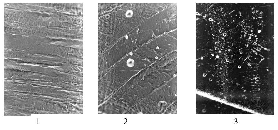 Структура титанового сплава полученная с помощью методики декорирования дислокаций