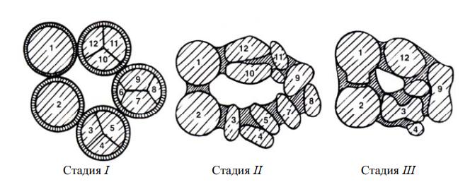 усадка компонентов W–Ni при жидкофазном спекании