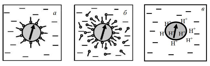 Основные типы стабилизации магнитных жидкостей