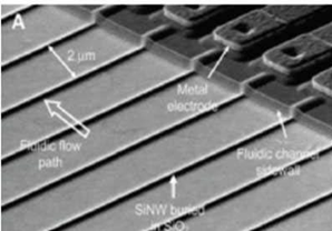 Матрица из кремниевых нанопроволок