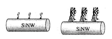 Модифицированная кремниевая нанопроволока