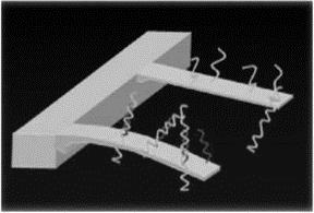 Схема биосенсора на основе нанокантилеверов для детектирования молекулыДНК
