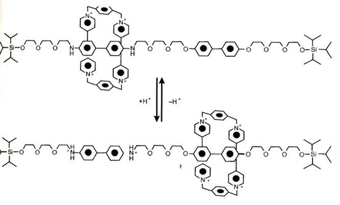 Структура молекулярного переключателя – ротоксана