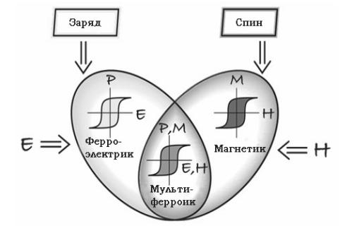 свойства мультиферроиков