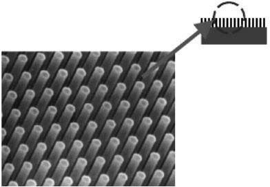 Микрофотография «нанотравы» из кремниевых стержней