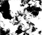 Электронномикроскопические изображения наноструктуры меди, полученной методом равноканального углового прессования