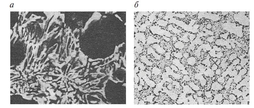 Микроструктура модифицированного натрием доэвтектического силумина АК9ч