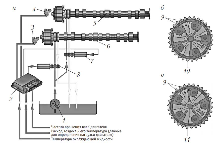 Схема системы непрерывного изменения фаз газораспределения с гидроуправляемой муфтой