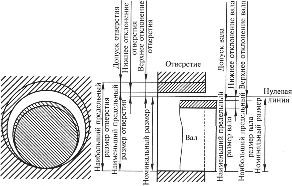 Формирование отклонений для вала и отверстия относительно нулевой линии номинального размера