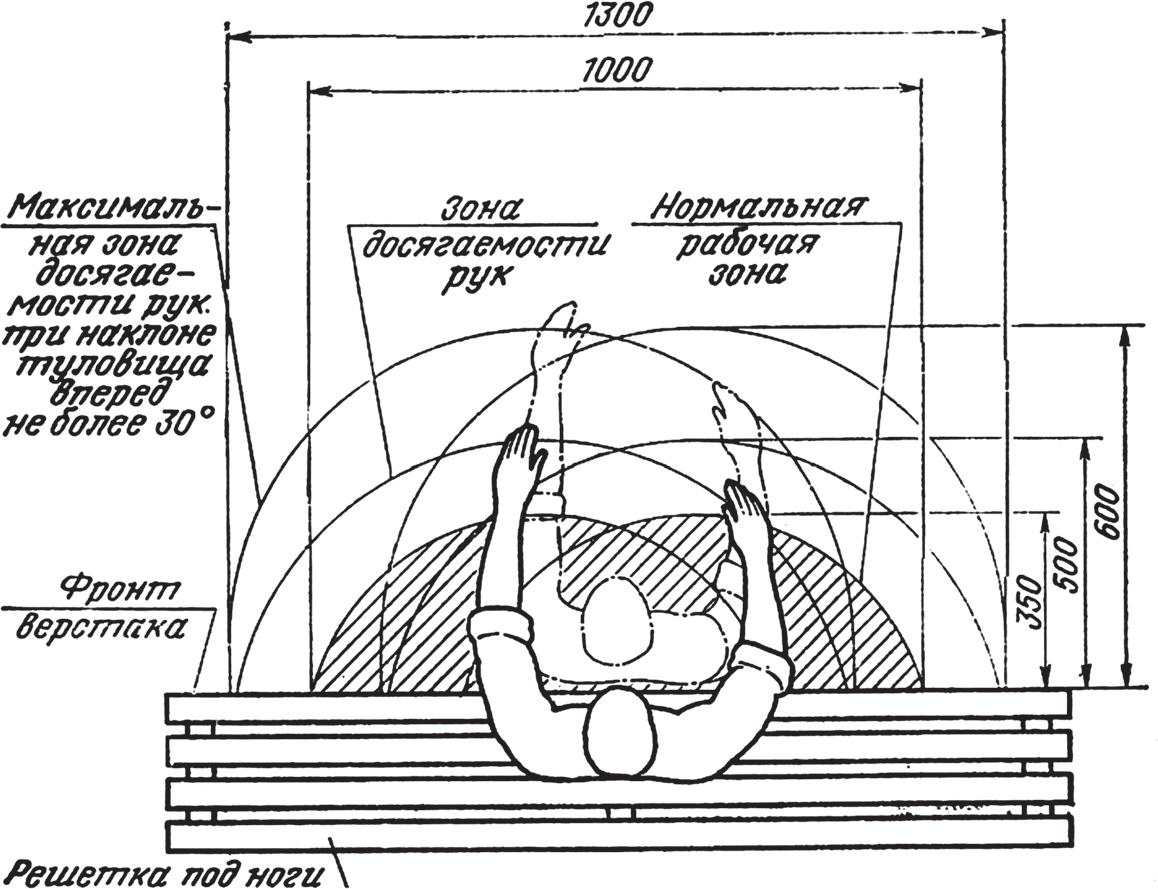 Зоны досягаемости рук в горизонтальной плоскости