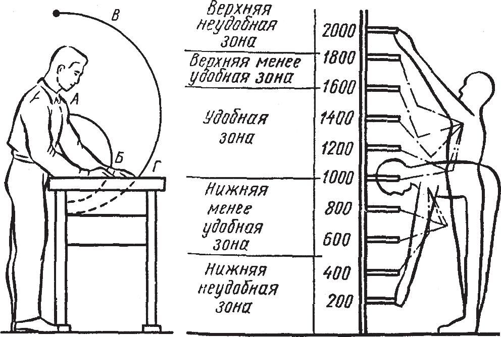 Пределы досягаемости рук слесаря-сборщика в рабочей вертикальной плоскости