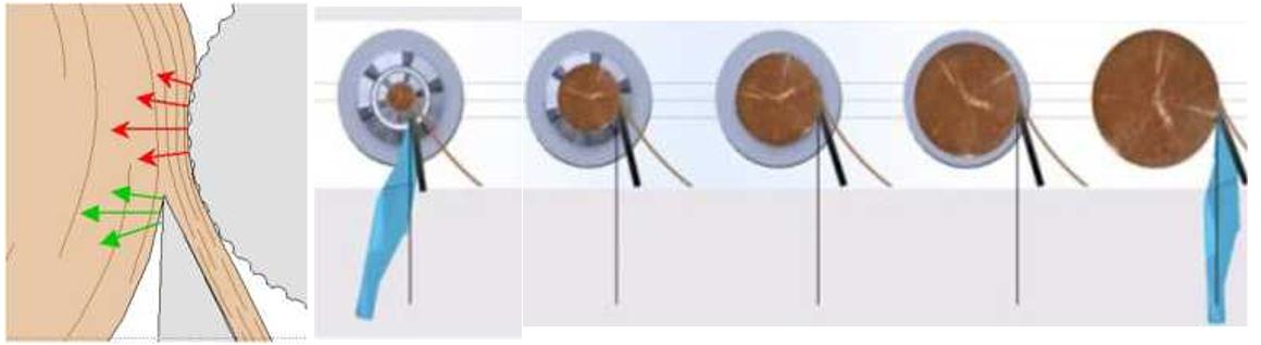 Схема зоны лущения с прижимным роликом и схема изменения угла резания
