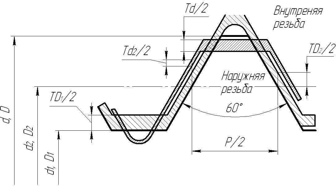расположение предельных контуров резьбы с натягом